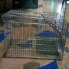 מלכודת כלוב נגד חולדות